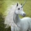 Puzzles Unicorns