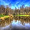 Sangchris Lake State Park Jigsaw