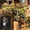 Sheriff Rescue