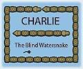 CharlieTheBlindWatersnake
