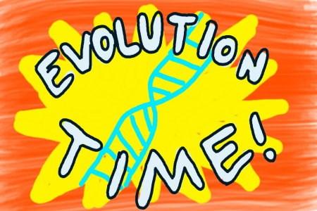 Evolution Time
