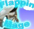 Flappin Mage