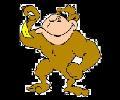 Help The Monkey