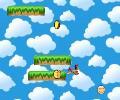 Salta Pollo