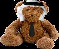 Teddy Ninja