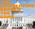 The Legislative Branch The Game